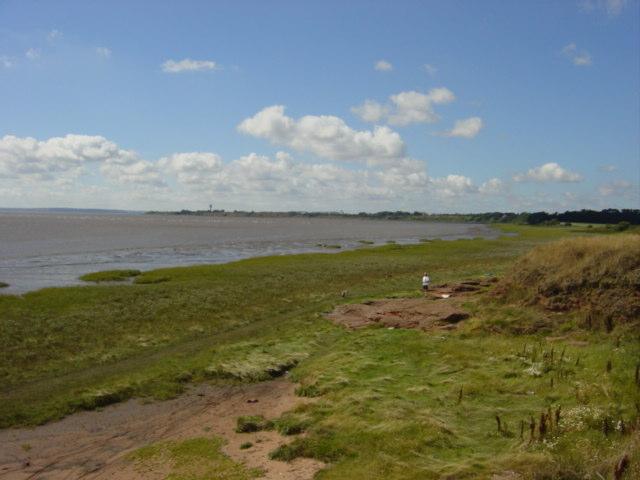 Saltmarsh and mudbanks at Hale point