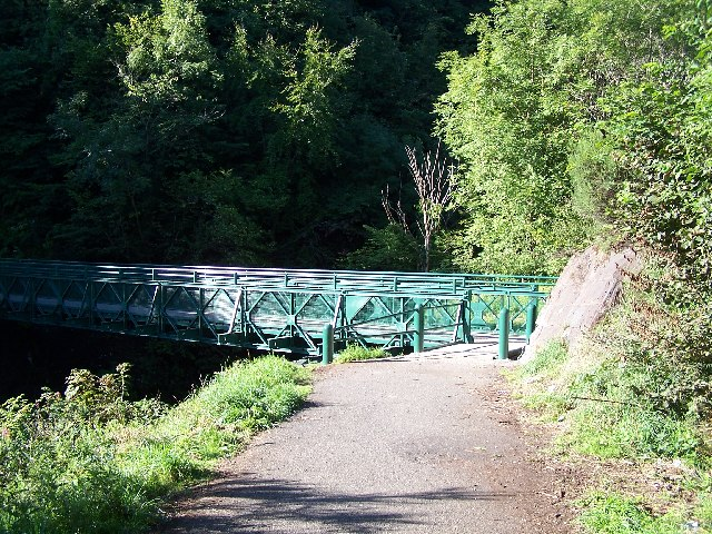 Footbridge in Devol Glen
