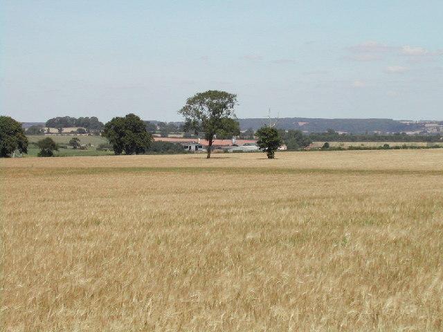 Holbeck Farm