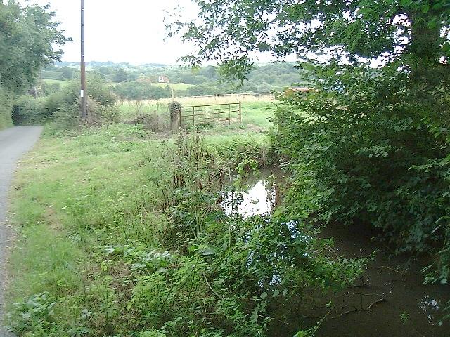 Pond and fields opposite Pinehurst Farm