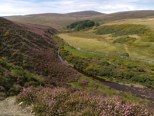 Druidale .  Isle of Man.