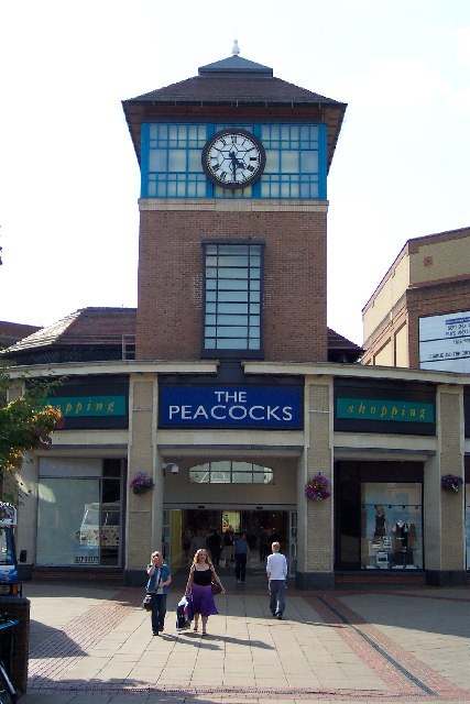 The Peacocks Centre, Woking