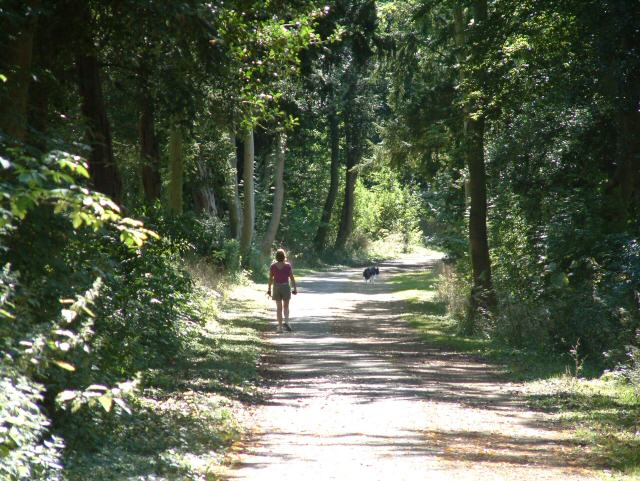 Path at Alwalton