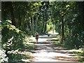TL1396 : Path at Alwalton by Steve Edge