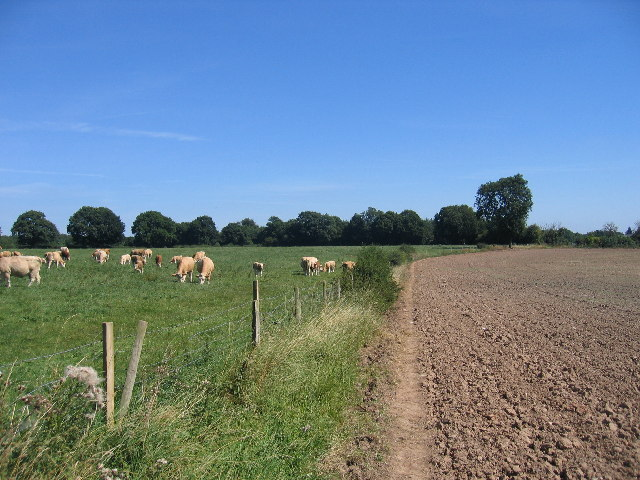Rowington Green - Wroxall Footpath
