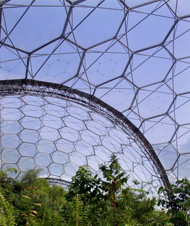 Tropical biodome 2