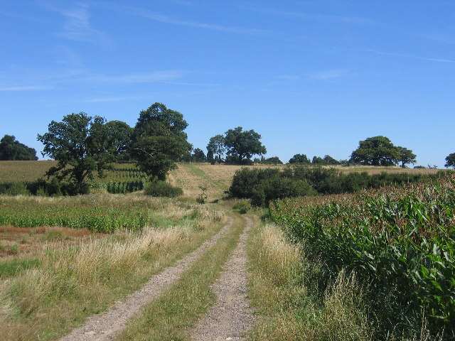 Footpath to Packwood Towers