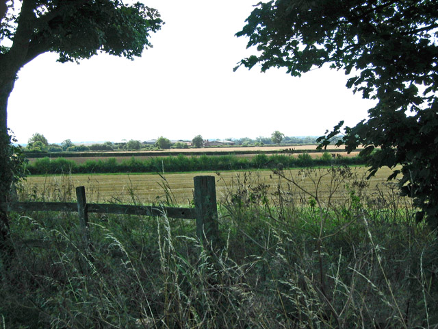 Fields next to School Lane, Buckminster