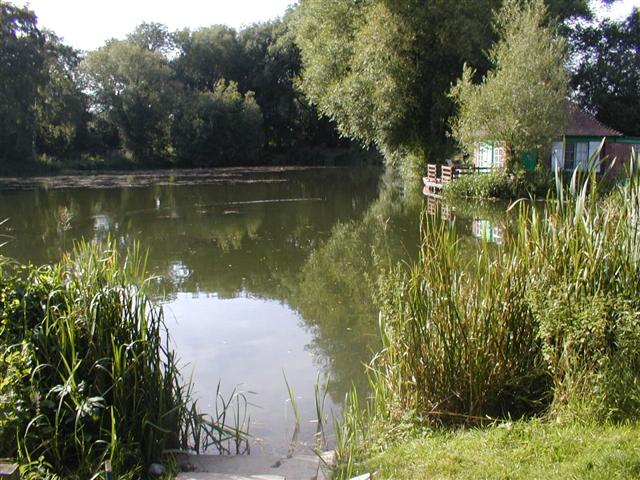 Woodhall Farm Pond