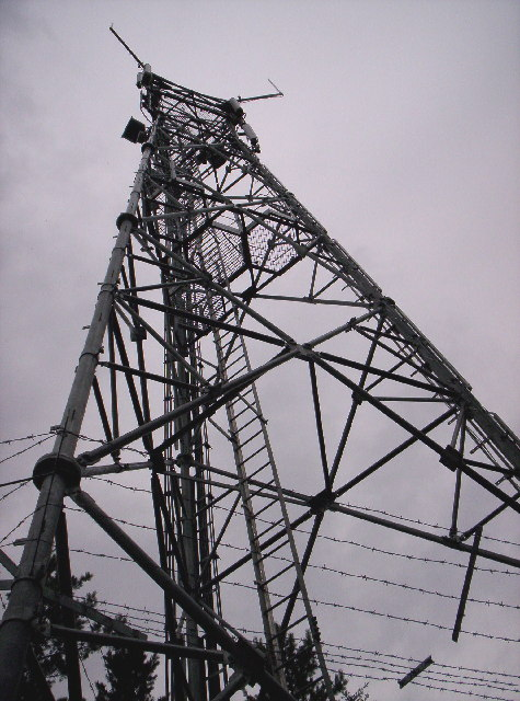 Orange Mobile Mast At Maryfield Woods Near Banchory