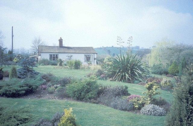 Yonder Hill garden
