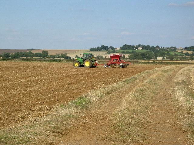 Farmland near Teigh, Rutland