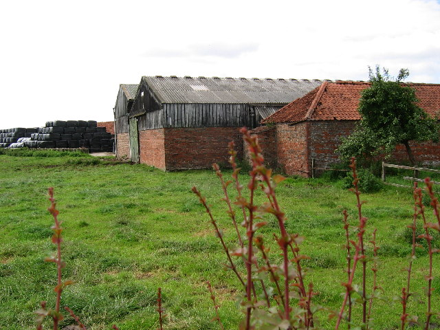 Farm - North Frodingham