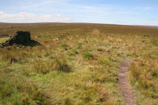 Footpath, Heptonstall Moor