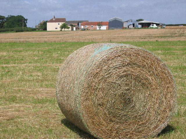Farm near Brandesburton