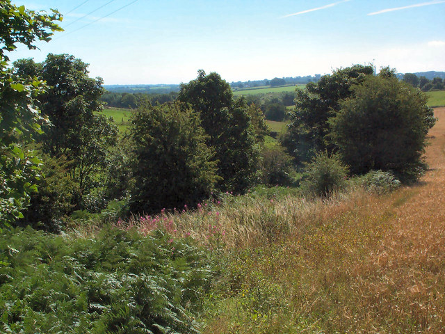 Valley of Bramhope Beck