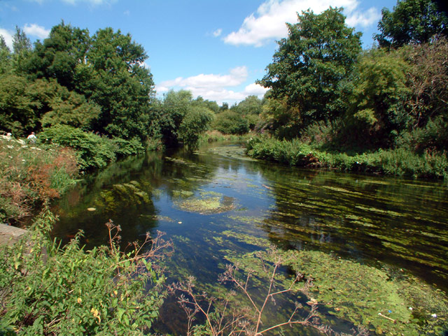 River Wandle, by The Watermeads (NT)