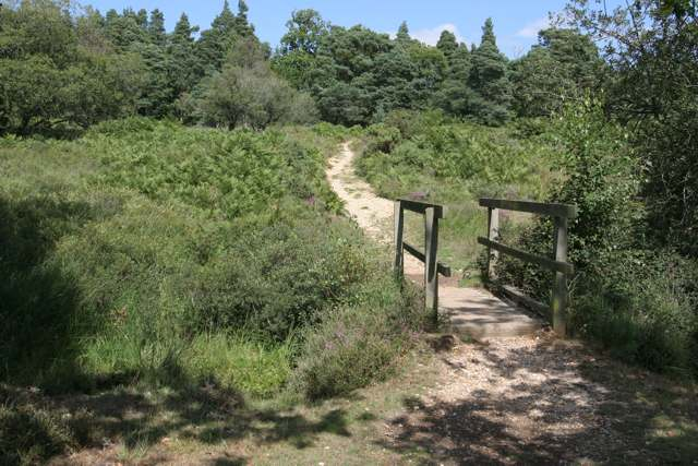 Footbridge in Blackensford Bottom