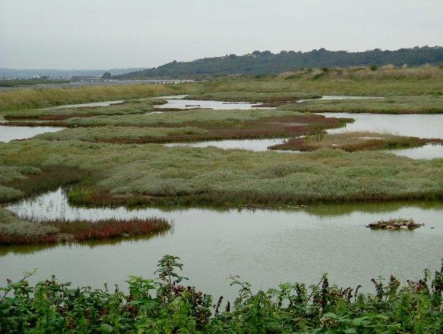 Lagoon on Two Tree Island
