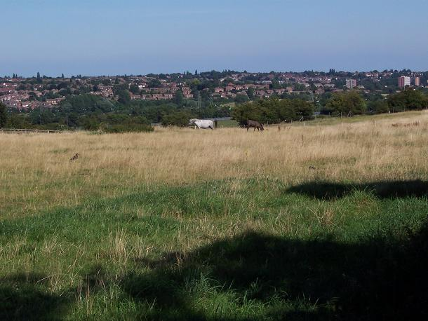 Looking east across the Sandwell Valley