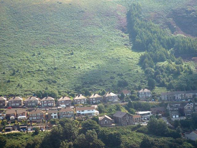 Mynydd Emroch Western Hillside