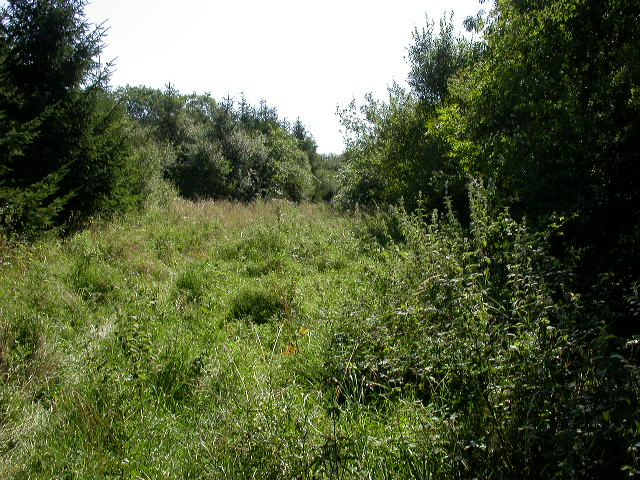 Footpath through Stanwick Pastures