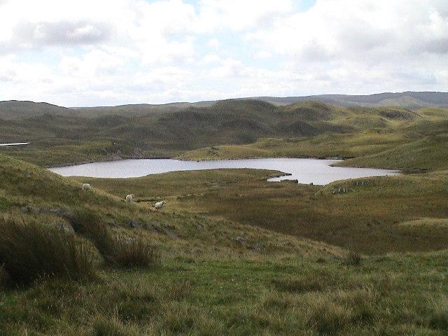 One of the Teifi Pools below Pen Bryn.