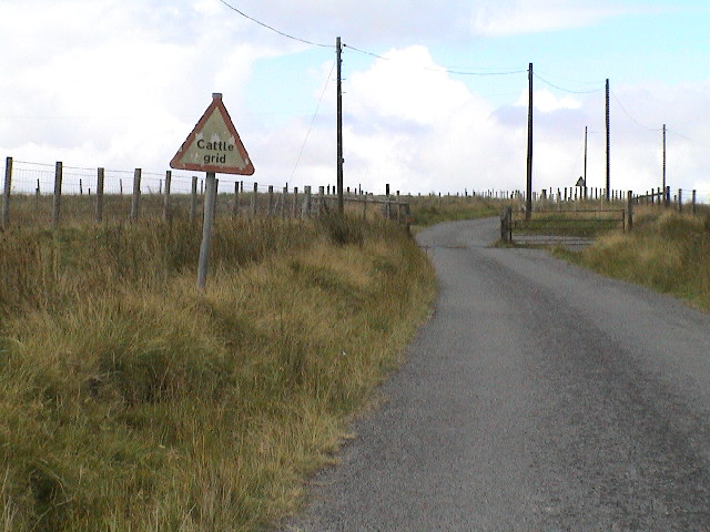 Cattle Grid and Cattle grid warning sign