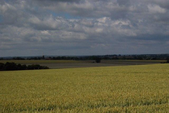 Near St Nicholas at Wade, Kent