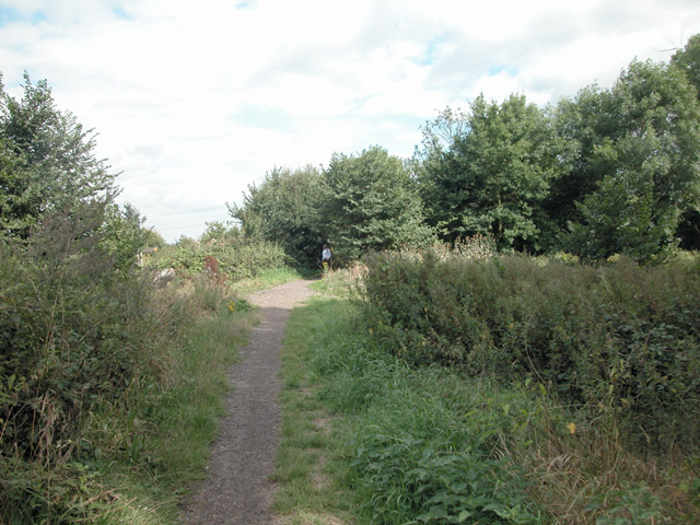 Nature reserve footpath