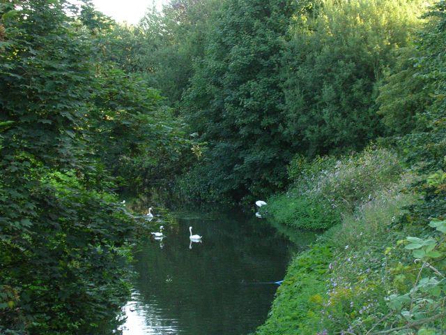 Salteye Brook