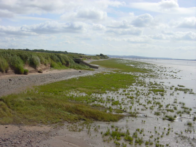 Saltmarsh and clay cliffs near old Liverpool airport