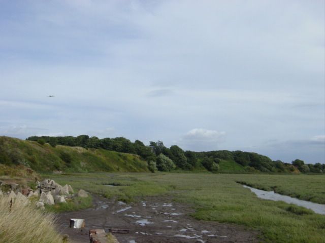 Hale Cliff and saltmarsh from Dungeon Lane
