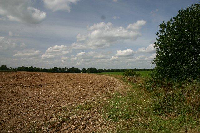 Farmland near Higham in Suffolk