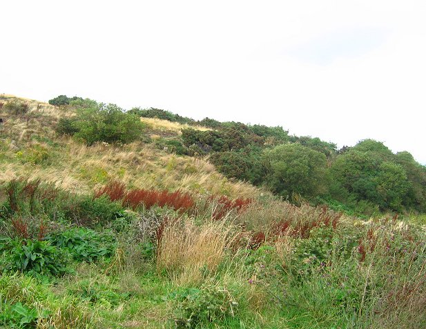 Drylawhill
