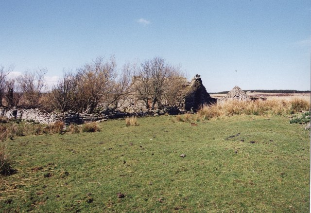 Ruins of croft house, Upper Smerlie