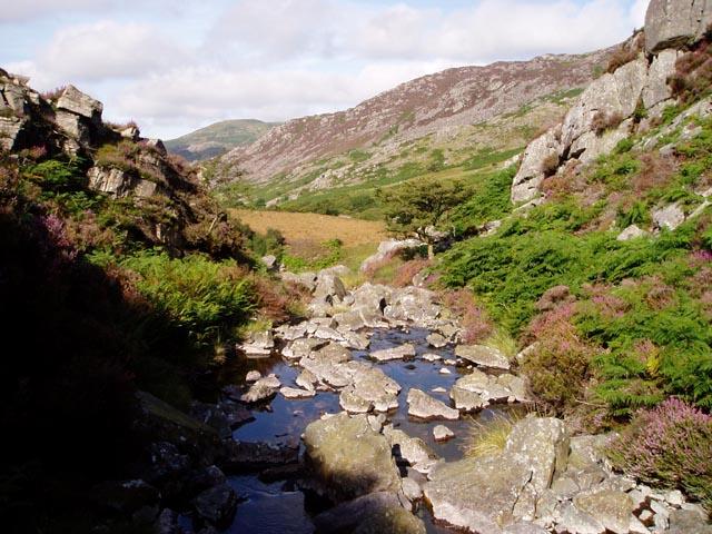 Stream above Cwm Bychan