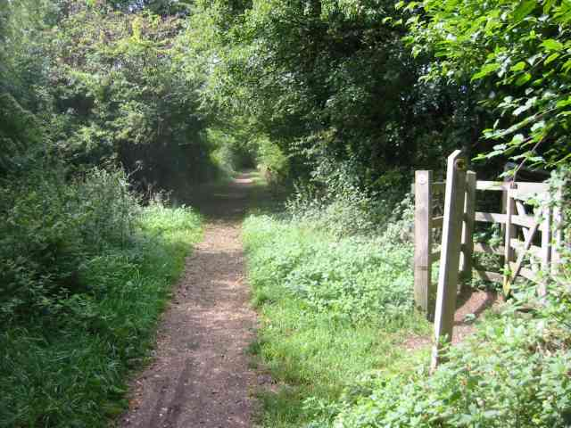 Old Railway line now Cycle path  Redbourn