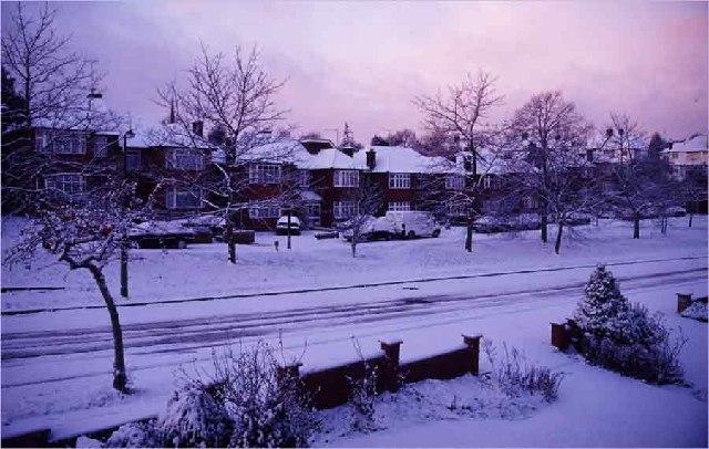 South Lodge Drive, Oakwood in winter