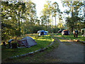 NY3601 : Camping in Pull Woods by Gary Rogers