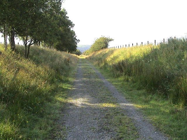 Path of disused railway through Cors Caron