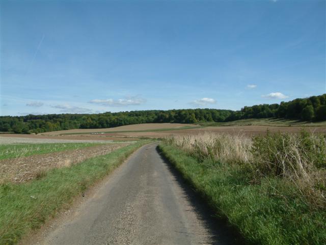 Farmland and Hammonds Wood