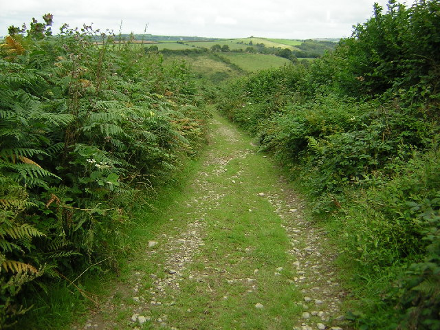Goodleigh to Stoke Rivers byway, Devon