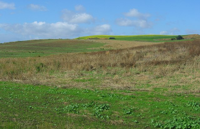 Farmland, Newbigging