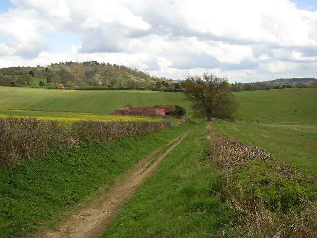 Track at Halfpenny Furze