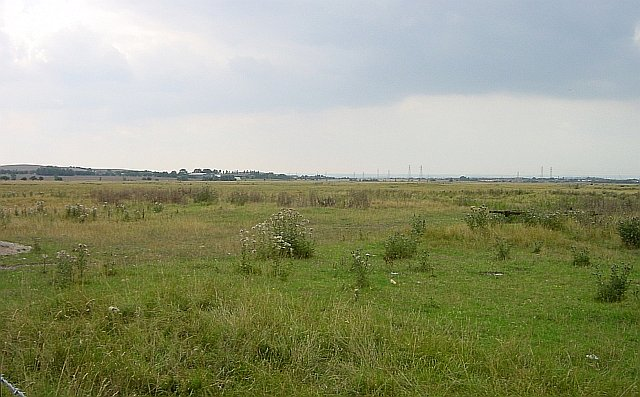 Sheppey Court Marshes