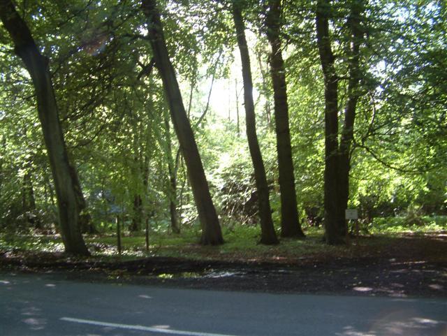 Ipsden Heath