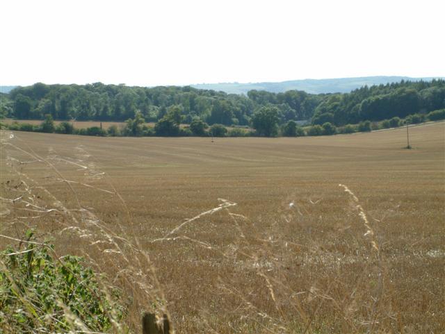 Grim's Ditch & Ridgeway