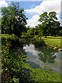 ST8477 : Gardens at the Manor Hotel: Castle Combe by Pam Brophy