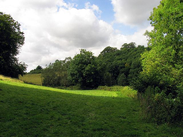 Pasture near Nettleton